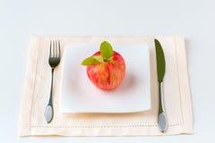 Roter Apfel auf einer Platte Nähren Sie Konzept Lizenzfreies Stockbild