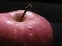 Roter Apfel auf Schwarzem - Makro stockbild