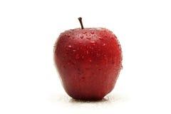Roter Apfel auf Weiß stockbild