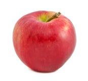 Roter Apfel auf weißem Hintergrund stockfotografie