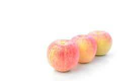 Roter Apfel auf weißem Hintergrund Stockbilder