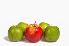 Roter Apfel, der in Gruppe grüne Äpfel auf weißen Hintergrund legt Stockbild