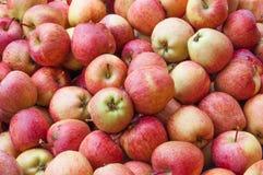 Roter Apfel, der heraus von der großen Gruppe Grün steht Stockbild