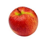 Roter Apfel getrennt Lizenzfreies Stockbild