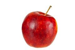 Roter Apfel, lokalisiert Lizenzfreie Stockbilder