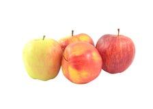Roter Apfel lokalisiert auf weißem Hintergrundausschnitt Stockbilder
