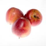 Roter Apfel lokalisiert auf weißem Hintergrundausschnitt Stockfoto