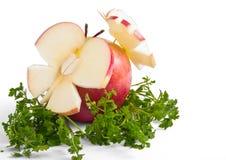 Roter Apfel mit dem Grün Stockfotografie