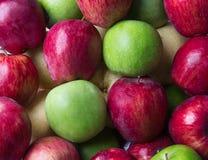 Roter Apfel mit grünem Apfel. Stockbild