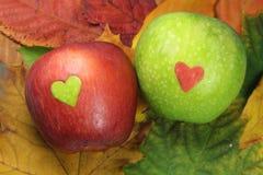 Roter Apfel mit grünem Herzen und grüner Apfel mit rotem Herzen Lizenzfreie Stockfotografie