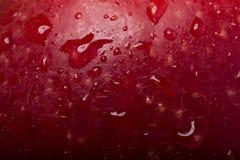 Roter Apfel mit Tropfen lizenzfreie stockbilder