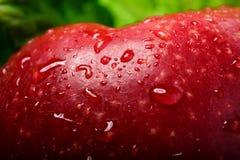 Roter Apfel mit Tropfen stockbild