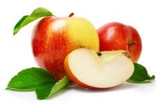 Roter Apfel trägt mit Schnitt- und Grünblättern Früchte Lizenzfreie Stockfotografie