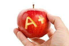 Roter Apfel und ein Pluszeichen Lizenzfreies Stockfoto