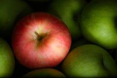Roter Apfel unter grünen Äpfeln lizenzfreie stockbilder