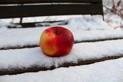 Roter Apfel an zum Schnee lizenzfreies stockbild