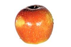 Roter Apple in den Tropfen auf weißem Hintergrund Stockfotografie