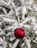Roter Ball als Detail von Weihnachtsdekoration Lizenzfreie Stockfotografie