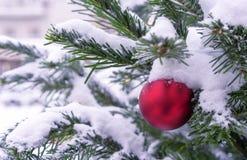 Roter Ball auf einem schneebedeckten Weihnachtsbaum Dekorationen neues Jahr, Weihnachten stockbilder