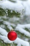 Roter Ball auf schneebedeckter Kiefernniederlassung Lizenzfreies Stockbild