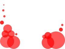 Roter Blasenweißhintergrund Stockfoto