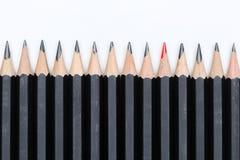 Roter Bleistift, der heraus von der Menge viel identischen schwarzen fel steht Lizenzfreie Stockfotos