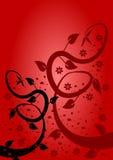 Roter Blumenhintergrund Lizenzfreie Stockfotos