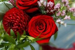 Roter Blumenstrauß mit Garten-Rosen, Eukalyptus und Dahlien Stockfotografie