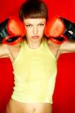 Roter Boxer Stockfoto
