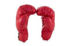 Roter Boxhandschuh Stockbild