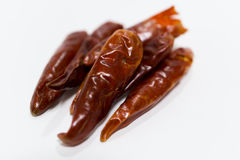 Roter Chili Pepper Stockfoto