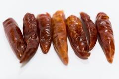 Roter Chili Pepper Stockfotografie