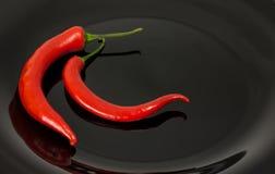 Roter Chili Pepper Lizenzfreies Stockfoto