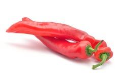 Roter Chili Pepper Lizenzfreie Stockbilder