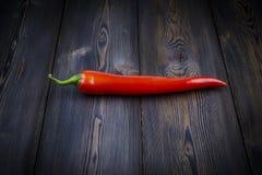 Roter Chili Pepper Lizenzfreie Stockfotografie