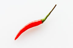 Roter Chili Pepper Lizenzfreies Stockfoto