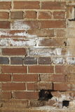 Roter Clay Brick Wall Grunge Texture Stockfotos