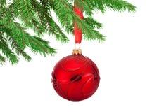Roter Dekorationen Weihnachtsball, der an einem Tannenbaumast hängt Stockbild