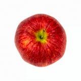 Roter-Deliciousapfel lizenzfreie stockfotos