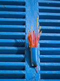 Roter Duft auf blauen Fenster-Blendenverschlüssen Stockfotografie