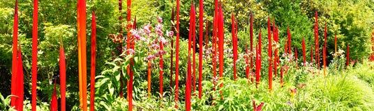 Roter durchgebrannter Glasrohraufstieg unter lilie Stockfotos
