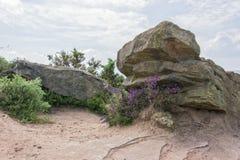 Roter Felsen Thurstaston allgemeines wirral Großbritannien Lizenzfreie Stockfotos