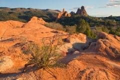 Roter Felsenvordergrund mit Garten der Götter im Hintergrund Stockfotografie