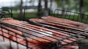 Roter Fisch wird auf dem Grill gebraten stock video footage