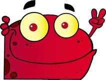 Roter Friedensfrosch, der um eine Ecke schaut Stockfoto