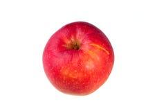 Roter gelber Apfelisolat-Weißhintergrund Stockfotografie
