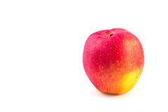 Roter gelber Apfelisolat-Weißhintergrund Stockbild