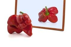 Roter Gemüsepaprika in einem Spiegel lokalisiert Lizenzfreies Stockfoto
