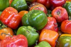 Roter, grüner und gelber Paprikapfeffer von Peru nannte rocoto in einem Markt Natürlicher Blick Stockbild