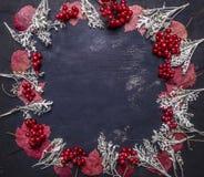Roter Herbstlaub und Beeren Viburnum, gezeichneter Rahmenraum für Draufsicht des hölzernen rustikalen Hintergrundes des Textes Lizenzfreies Stockfoto